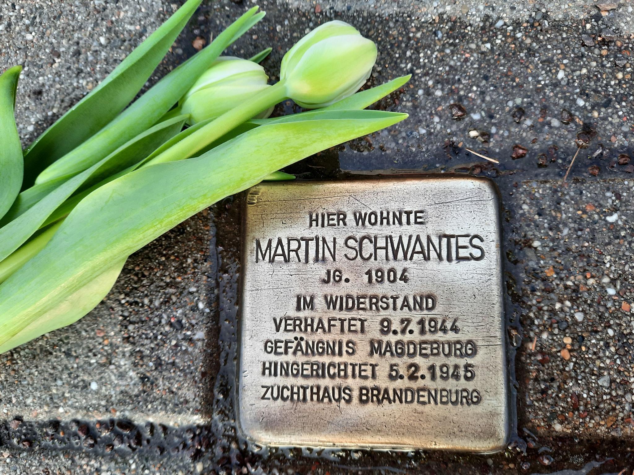 Stolperstein Martin Schwantes