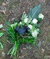 Niederlegung von Blumen